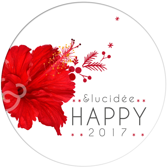 elucidee-happyy-2017